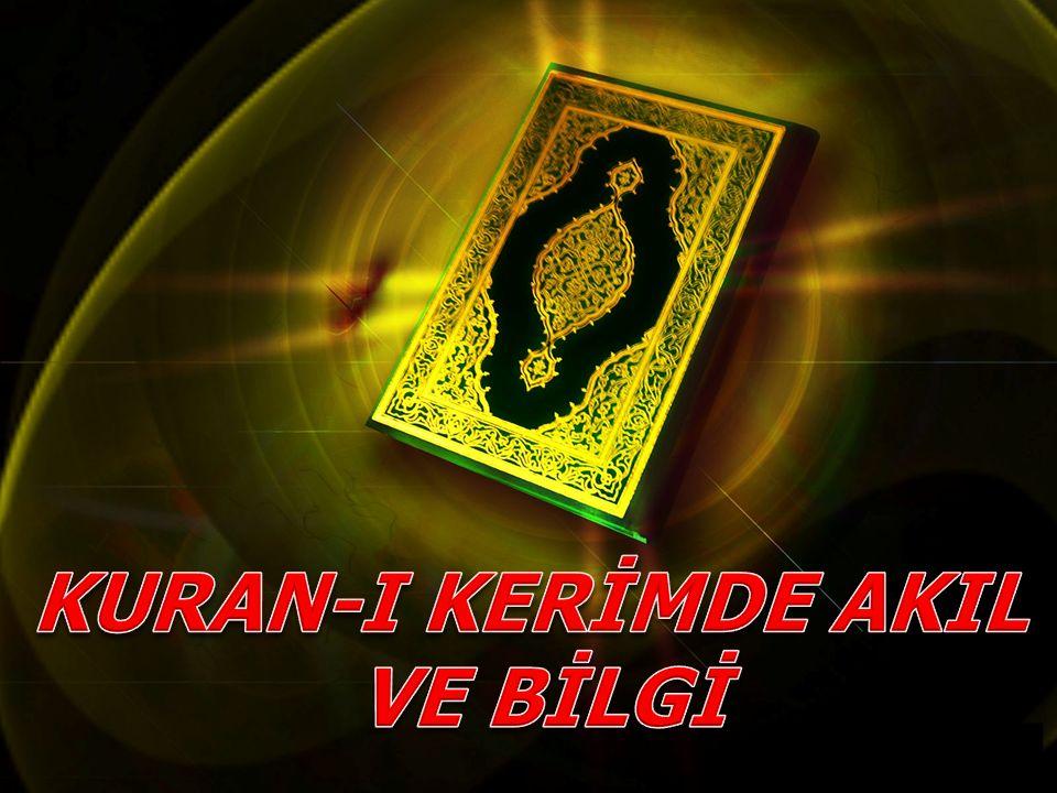 Kur'an'a göre bilgi edinmenin yolları: Duyu organları, Akıl, Vahiydir.