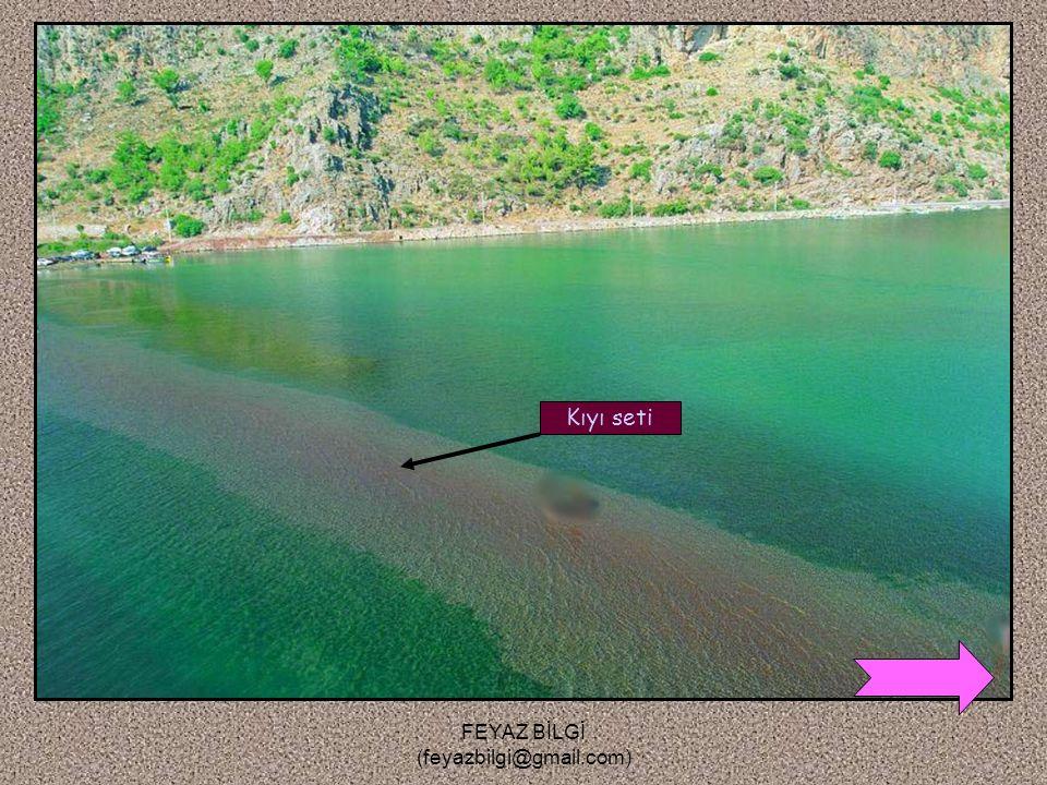 FEYAZ BİLGİ (feyazbilgi@gmail.com) 2-Kıyı seti ( kıyı oku ) : Dalga ve akıntıların taşıdıkları maddeleri kıyının önünde yığarak oluşturduğu setlere de