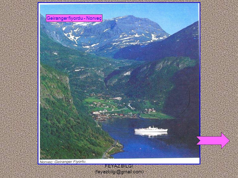 FEYAZ BİLGİ (feyazbilgi@gmail.com) Kıyı Tipleri 1- Fiyord kıyı : Buzul vadilerinin deniz altında kalmasıyla oluşan kıyılardır. Örnek : Norveç, İskoçya