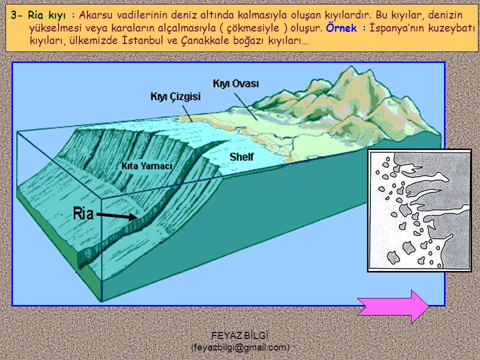 FEYAZ BİLGİ (feyazbilgi@gmail.com) Güney Şili 2- Skyer kıyı : Buzulların etkisiyle oluşan, çok karışık bir yapısı olan ve binlerce adacıktan meydana g