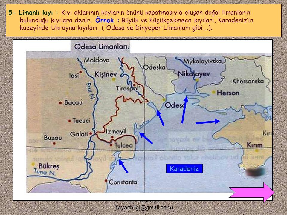 FEYAZ BİLGİ (feyazbilgi@gmail.com) 4- Dalmaçya kıyı : Denize paralel uzanan dağlar arasındaki vadilere denizin girmesiyle oluşan kıyılardır. Kıyıda, k