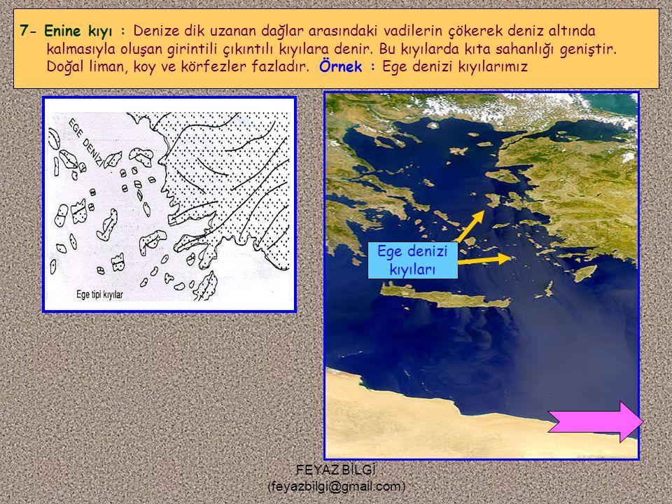 FEYAZ BİLGİ (feyazbilgi@gmail.com) 6- Haliç kıyı : Gelgitin etkili olduğu yerlerde, akarsu ağızlarının genişlemesiyle oluşan kıyılardır. Örnek : Londr