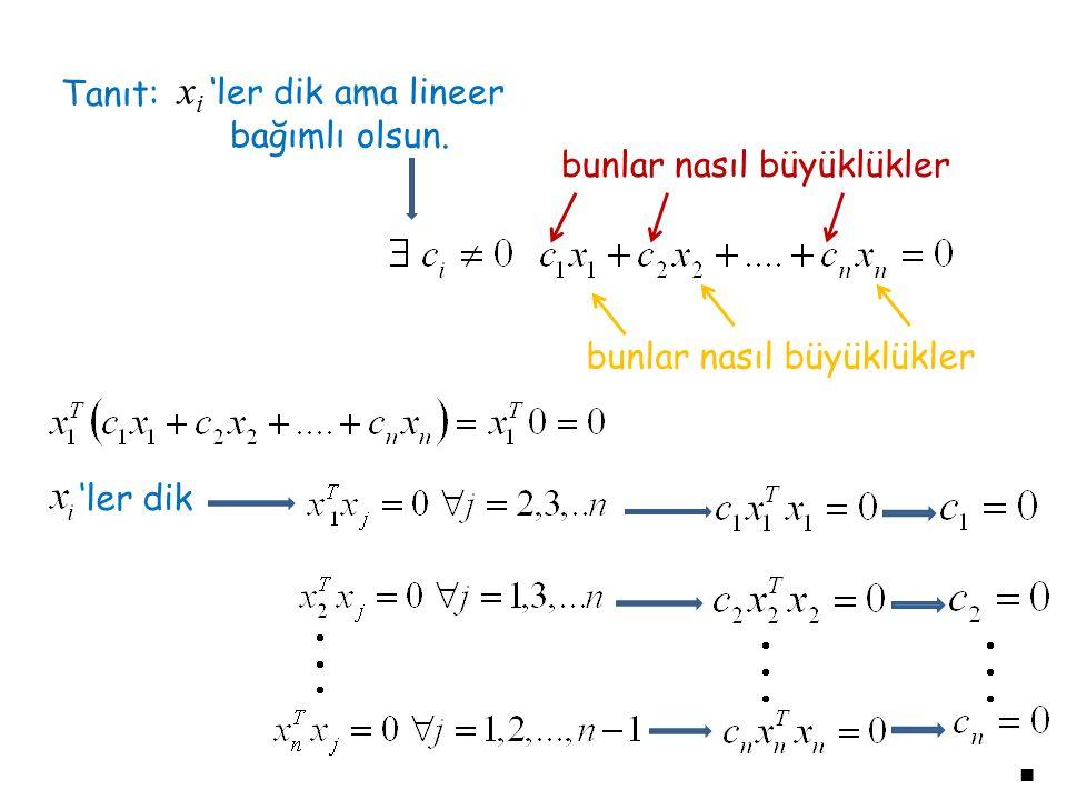 Tanıt: x i 'ler dik ama lineer bağımlı olsun. bunlar nasıl büyüklükler 'ler dik ■