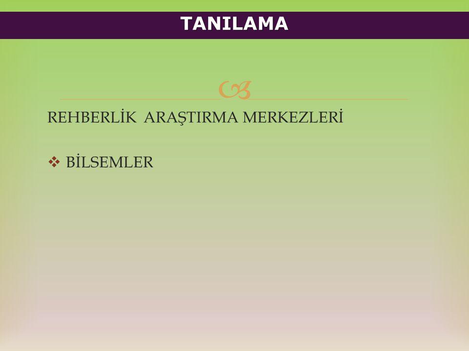  REHBERLİK ARAŞTIRMA MERKEZLERİ  BİLSEMLER TANILAMA