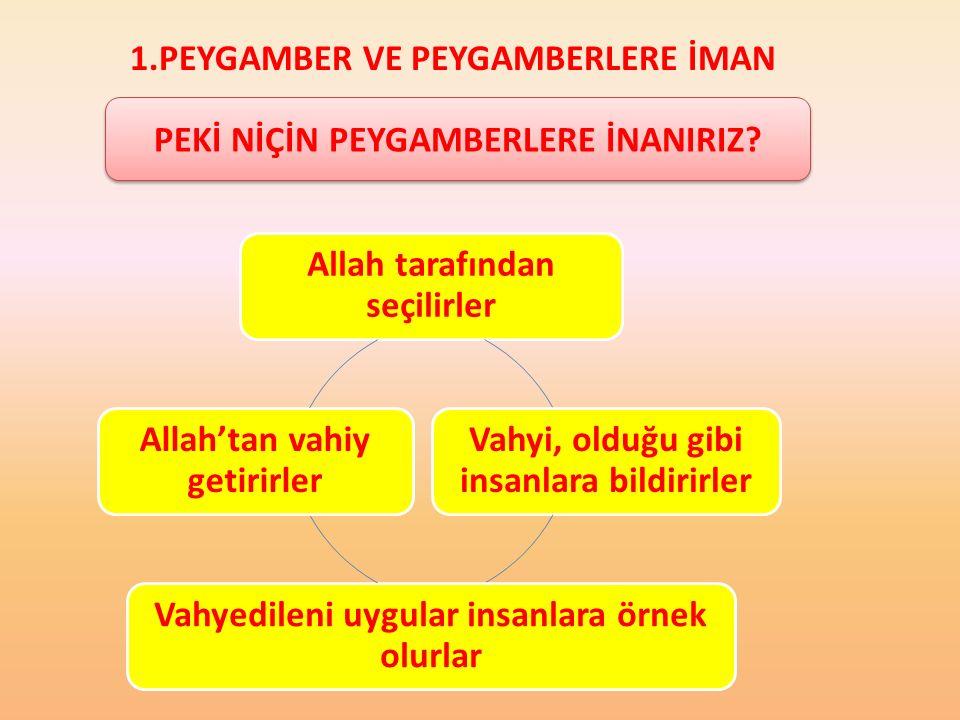 1.PEYGAMBER VE PEYGAMBERLERE İMAN 1.