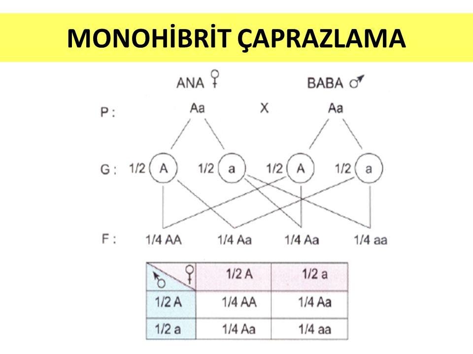 Mendelin Monohibrit Çaprazlamasının Sonuçları: Karakterlerin atadan yavruya geçmesini sağlayan birimler (gen) vardır.