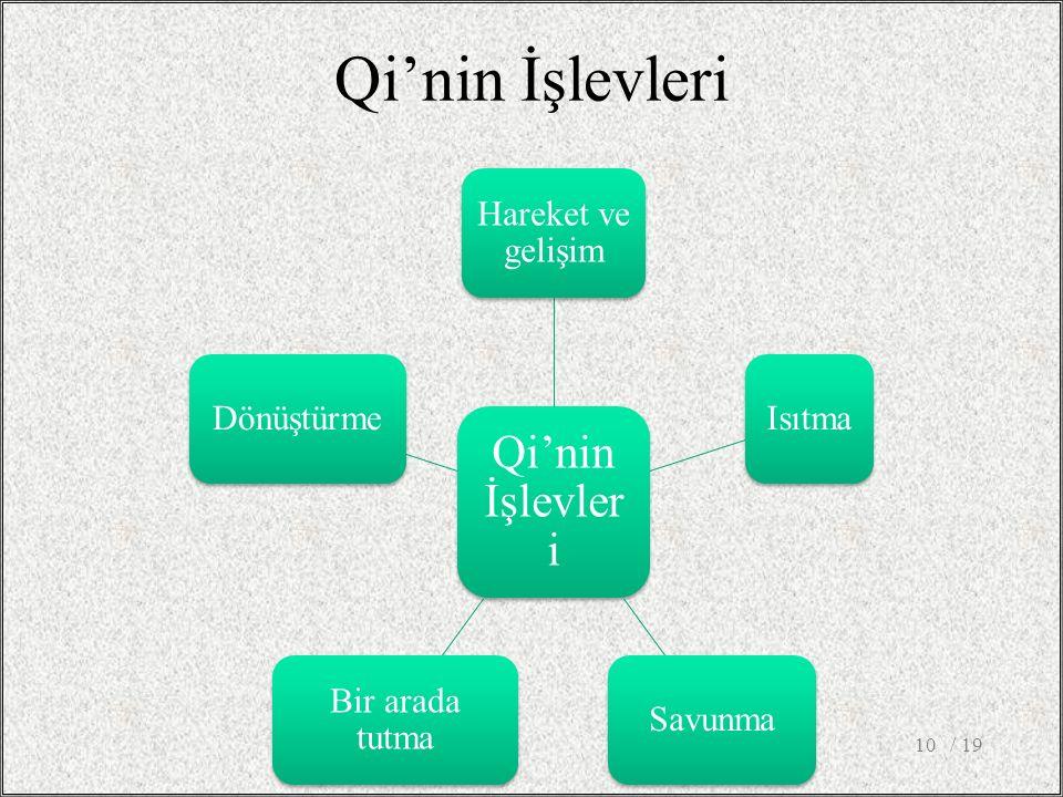 Qi'nin İşlevleri Hareket ve gelişim IsıtmaSavunma Bir arada tutma Dönüştürme / 1910