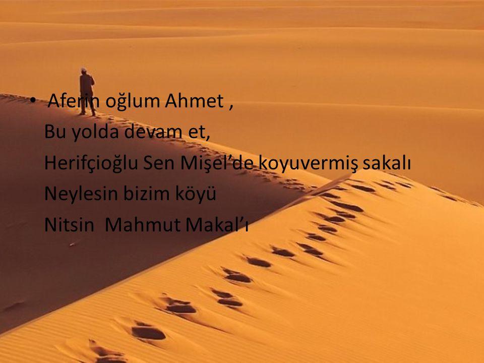 Aferin oğlum Ahmet, Bu yolda devam et, Herifçioğlu Sen Mişel'de koyuvermiş sakalı Neylesin bizim köyü Nitsin Mahmut Makal'ı
