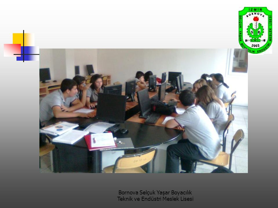 Bornova Selçuk Yaşar Boyacılık Teknik ve Endüstri Meslek Lisesi