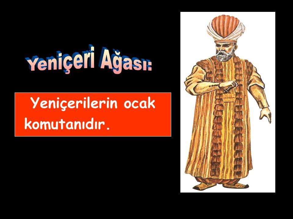 Donanma komutanıdır. İstanbul'da bulunduğu zamanlar divana katılırdı.