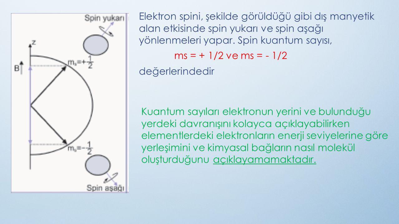 Elektron spini, şekilde görüldüğü gibi dış manyetik alan etkisinde spin yukarı ve spin aşağı yönlenmeleri yapar. Spin kuantum sayısı, ms = + 1/2 ve ms