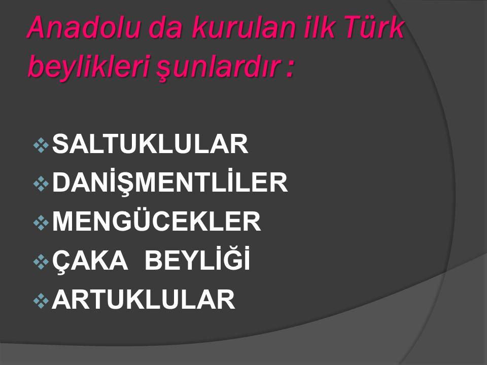 Anadolu da kurulan ilk Türk beylikleri şunlardır :  SALTUKLULAR  DANİŞMENTLİLER  MENGÜCEKLER  ÇAKA BEYLİĞİ  ARTUKLULAR