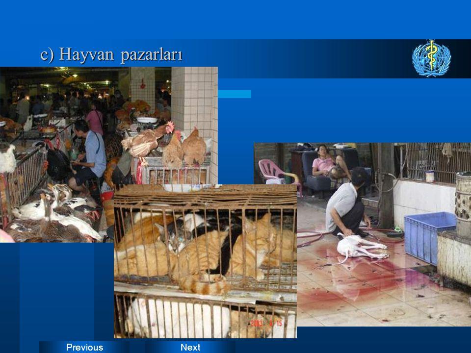 NextPrevious c) Hayvan pazarları