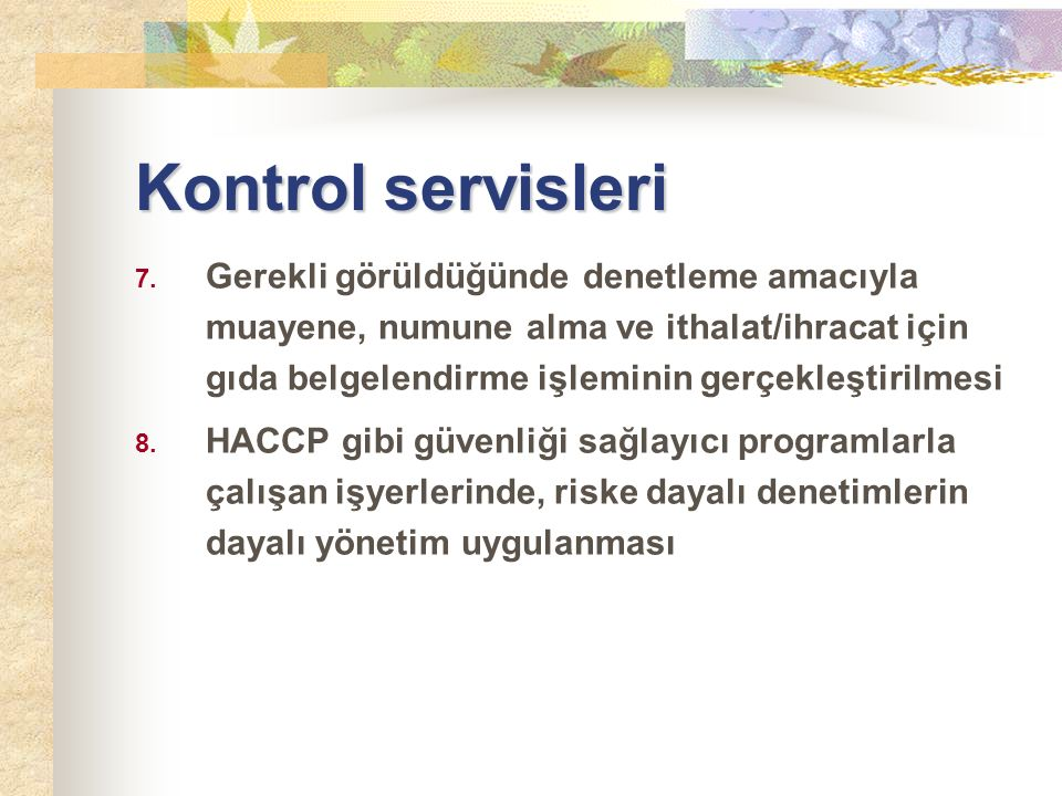 Kontrol servisleri 7.