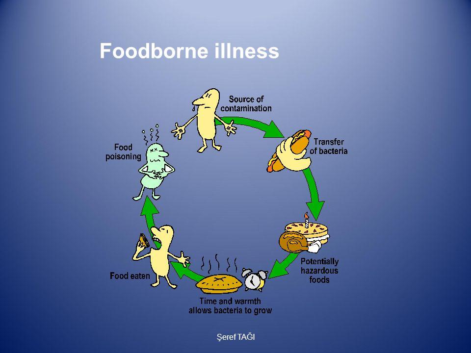 Foodborne illness Şeref TAĞI