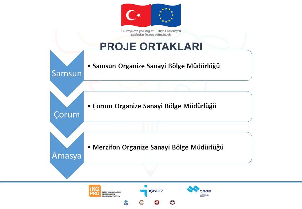 Proje Toplam Uygun Maliyeti (A) Sözleşme Makamında Talep Edilen Tutar (B) % Projenin Toplam Uygun Maliyetleri İçindeki Yüzdesi 386.263,15 AVRO314.186,44 AVRO81,34 %