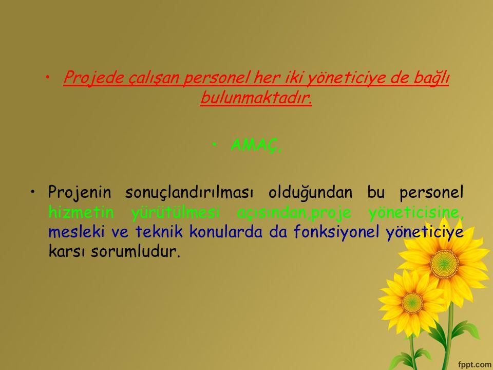 Projede çalışan personel her iki yöneticiye de bağlı bulunmaktadır. AMAÇ, Projenin sonuçlandırılması olduğundan bu personel hizmetin yürütülmesi açısı