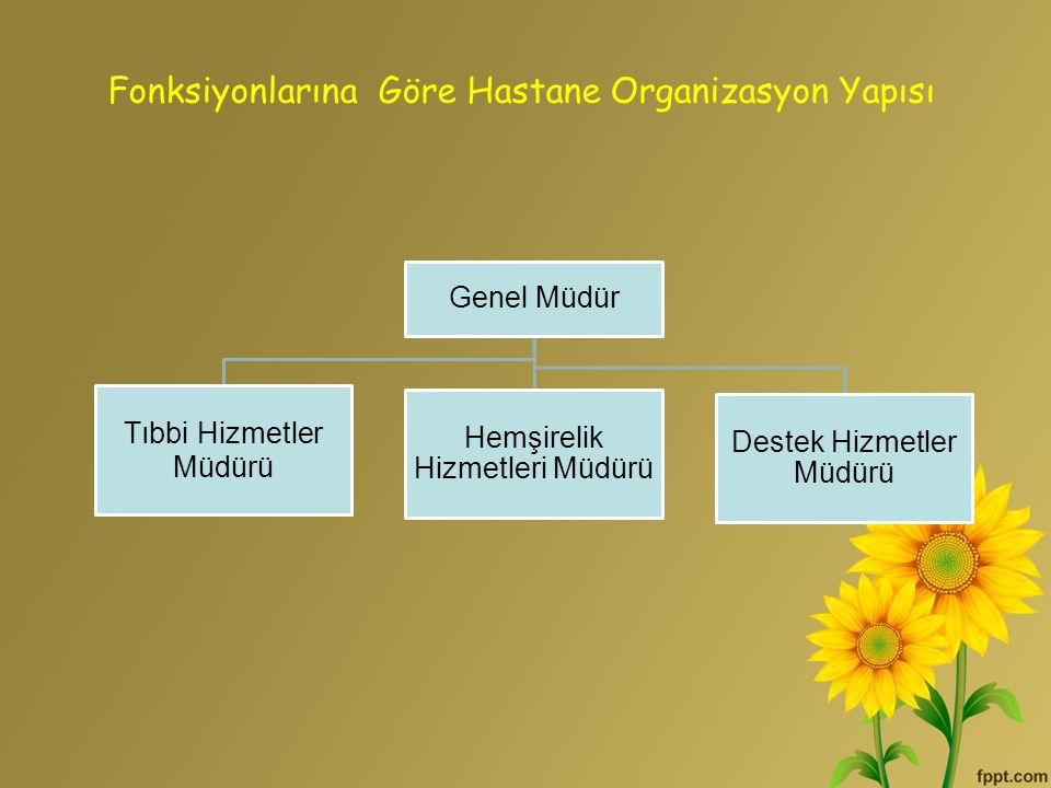 Genel Müdür Tıbbi Hizmetler Müdürü Hemşirelik Hizmetleri Müdürü Destek Hizmetler Müdürü Fonksiyonlarına Göre Hastane Organizasyon Yapısı