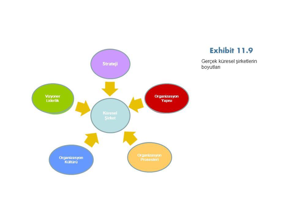 Strateji Organizasyon Yapısı Vizyoner Liderlik Organizasyon Kültürü Organizasyon Prosesleri Küresel Şirket Gerçek küresel şirketlerin boyutları
