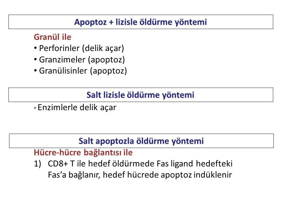 Apoptoz + lizisle öldürme yöntemi Granül ile Perforinler (delik açar) Granzimeler (apoptoz) Granülisinler (apoptoz) Enzimlerle delik açar Hücre-hücre bağlantısı ile 1)CD8+ T ile hedef öldürmede Fas ligand hedefteki Fas'a bağlanır, hedef hücrede apoptoz indüklenir Salt apoptozla öldürme yöntemi Salt lizisle öldürme yöntemi
