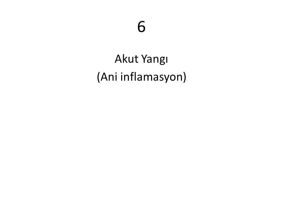 6 Akut Yangı (Ani inflamasyon)