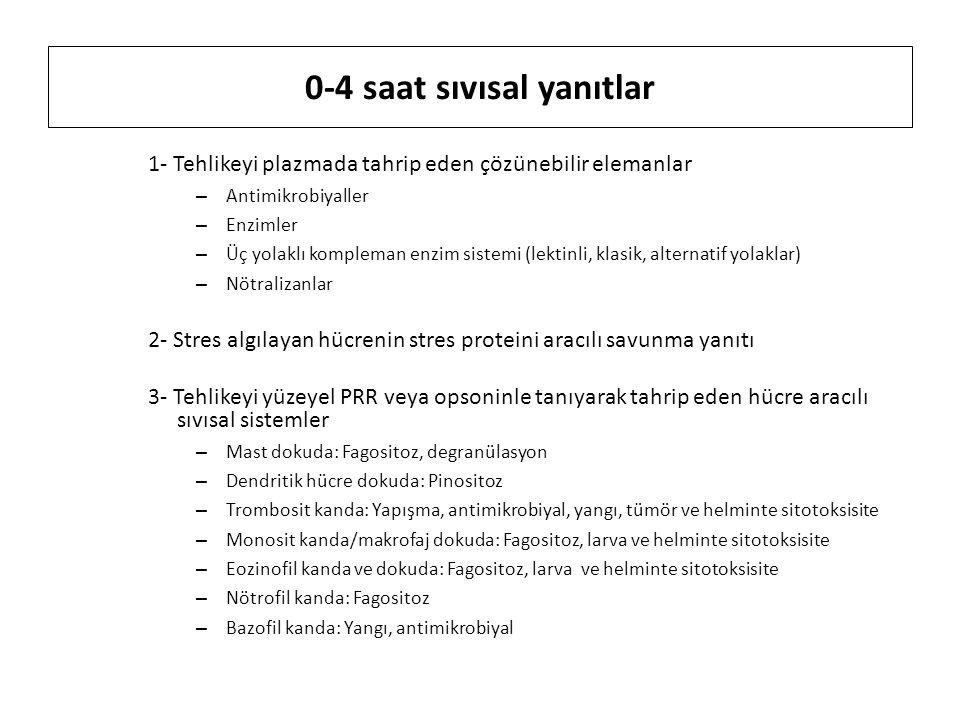 0-4 saat sıvısal yanıtlar 1- Tehlikeyi plazmada tahrip eden çözünebilir elemanlar – Antimikrobiyaller – Enzimler – Üç yolaklı kompleman enzim sistemi (lektinli, klasik, alternatif yolaklar) – Nötralizanlar 2- Stres algılayan hücrenin stres proteini aracılı savunma yanıtı 3- Tehlikeyi yüzeyel PRR veya opsoninle tanıyarak tahrip eden hücre aracılı sıvısal sistemler – Mast dokuda: Fagositoz, degranülasyon – Dendritik hücre dokuda: Pinositoz – Trombosit kanda: Yapışma, antimikrobiyal, yangı, tümör ve helminte sitotoksisite – Monosit kanda/makrofaj dokuda: Fagositoz, larva ve helminte sitotoksisite – Eozinofil kanda ve dokuda: Fagositoz, larva ve helminte sitotoksisite – Nötrofil kanda: Fagositoz – Bazofil kanda: Yangı, antimikrobiyal