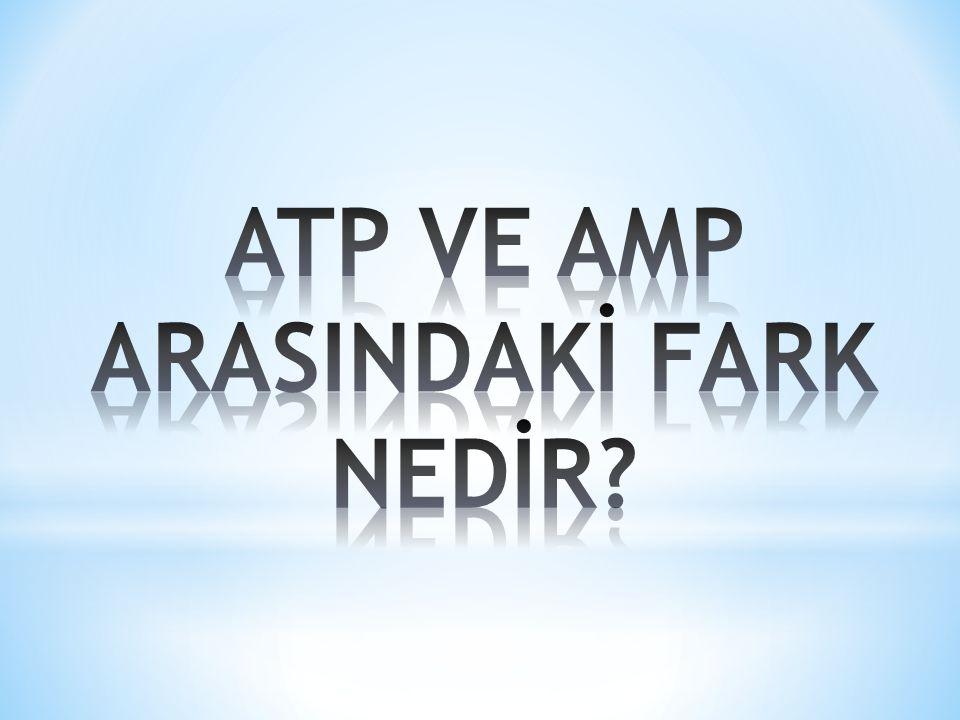 * ATP ve AMP meslek alanlarına geçişlerde öğrencinin sağlık durumunun geçmek istediği alanın öğrenimine elverişli olması esastır.