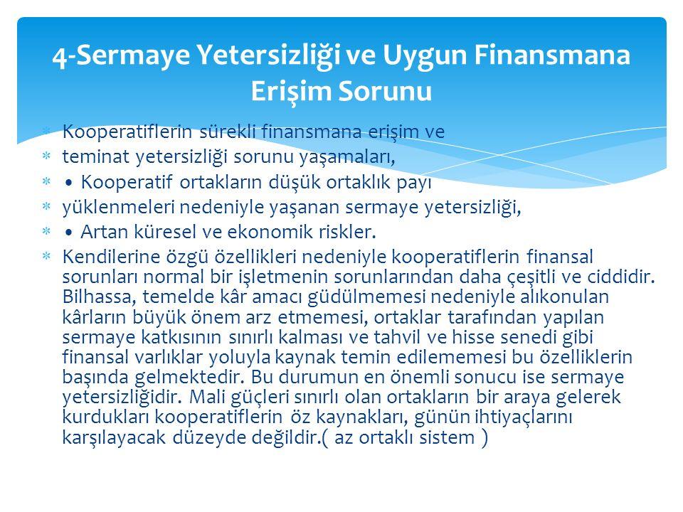  Mevcut iç ve dış denetim mekanizmasının etkili ve yol gösterici olmaması,  Türk kooperatifçiliğinin gelişimi ile yakından ilgili olan bir diğer konu da kooperatiflerde denetim sorunudur.