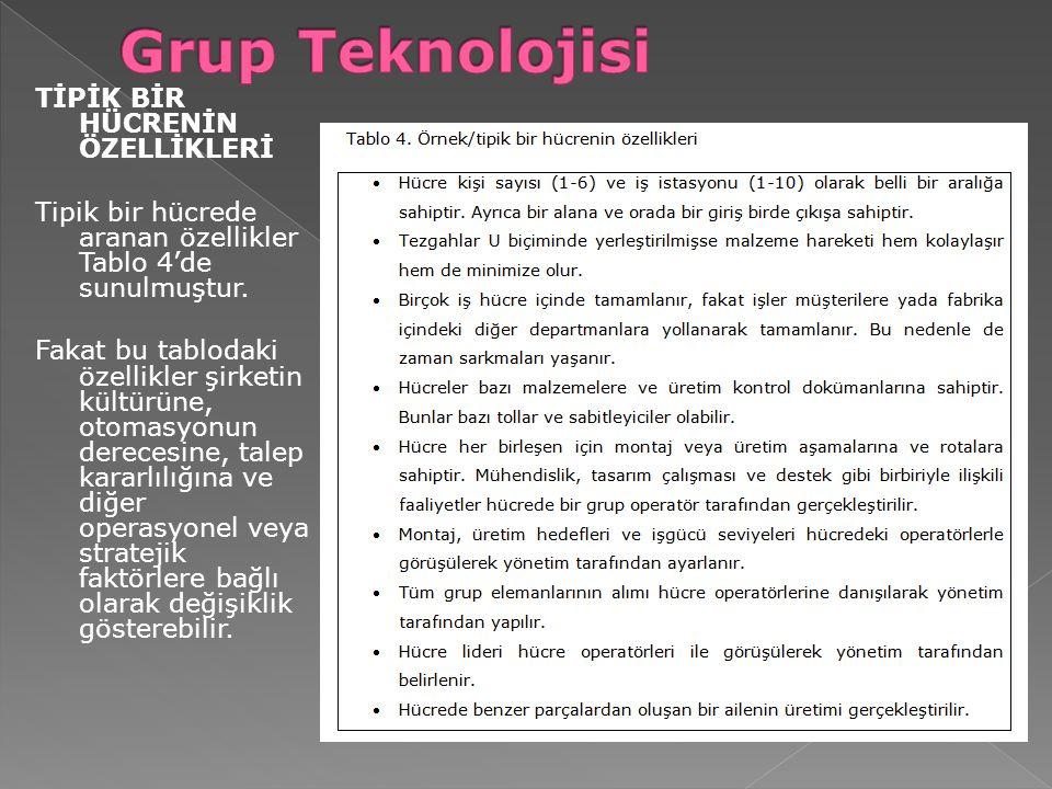TİPİK BİR HÜCRENİN ÖZELLİKLERİ Tipik bir hücrede aranan özellikler Tablo 4'de sunulmuştur. Fakat bu tablodaki özellikler şirketin kültürüne, otomasyon