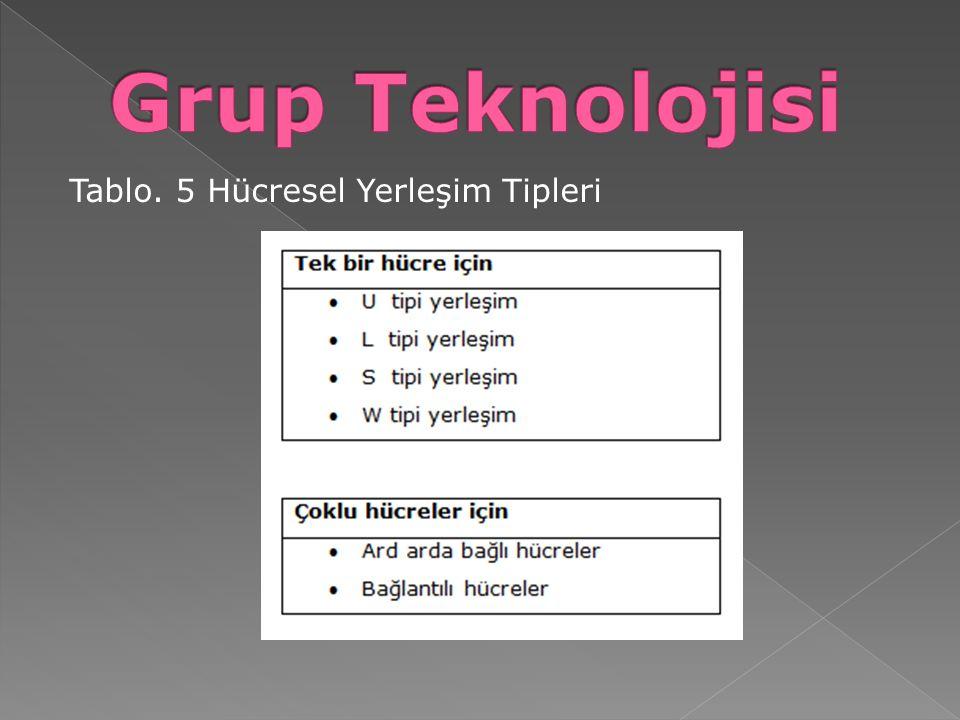 Tablo. 5 Hücresel Yerleşim Tipleri