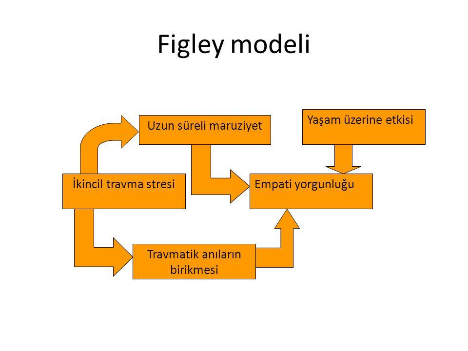 Uzun süreli maruziyet İkincil travma stresi Travmatik anıların birikmesi Empati yorgunluğu Yaşam üzerine etkisi Figley modeli