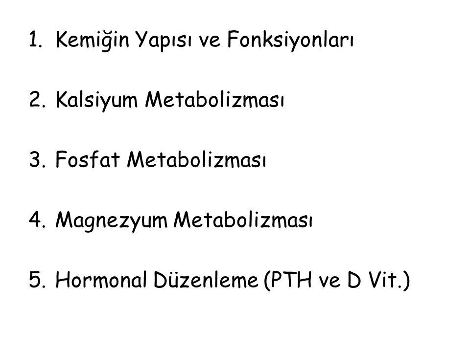 1.Kemiğin Yapısı ve Fonksiyonları 2.Kalsiyum Metabolizması 3.Fosfat Metabolizması 4.Magnezyum Metabolizması 5.Hormonal Düzenleme (PTH ve D Vit.)