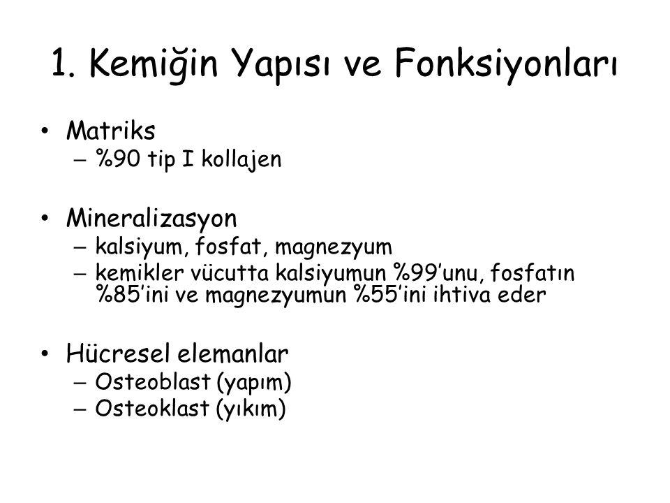 1. Kemiğin Yapısı ve Fonksiyonları Matriks – %90 tip I kollajen Mineralizasyon – kalsiyum, fosfat, magnezyum – kemikler vücutta kalsiyumun %99'unu, fo