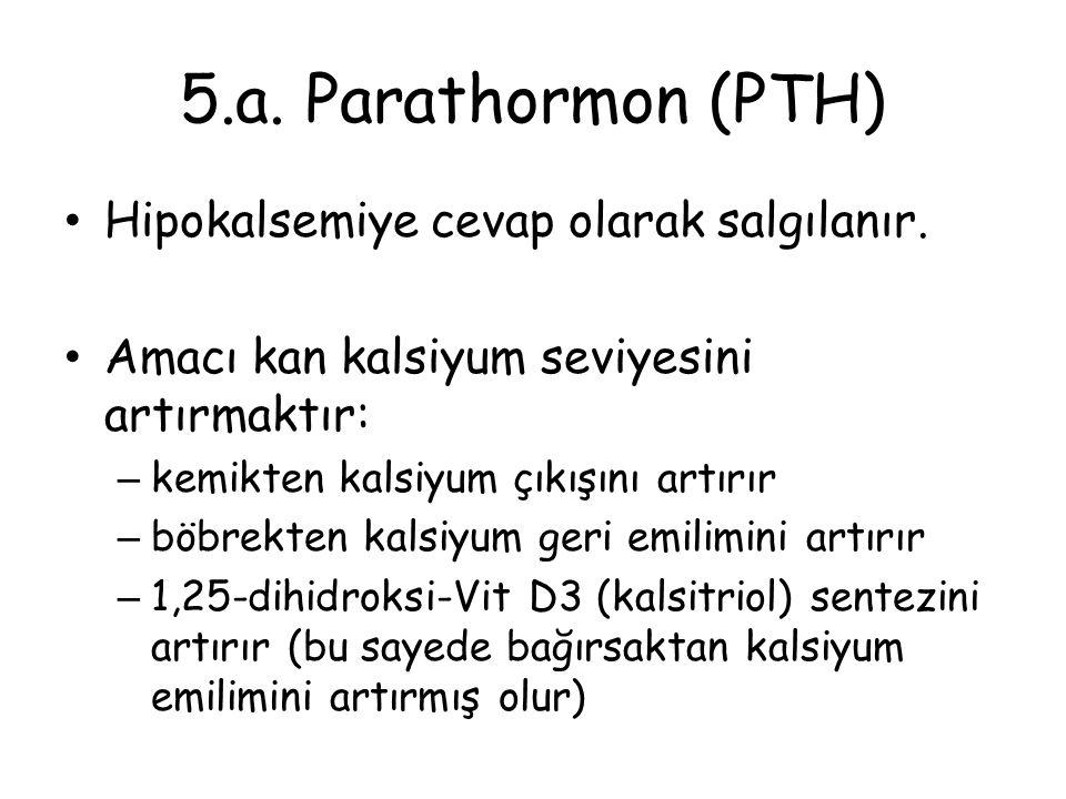 5.a. Parathormon (PTH) Hipokalsemiye cevap olarak salgılanır. Amacı kan kalsiyum seviyesini artırmaktır: – kemikten kalsiyum çıkışını artırır – böbrek