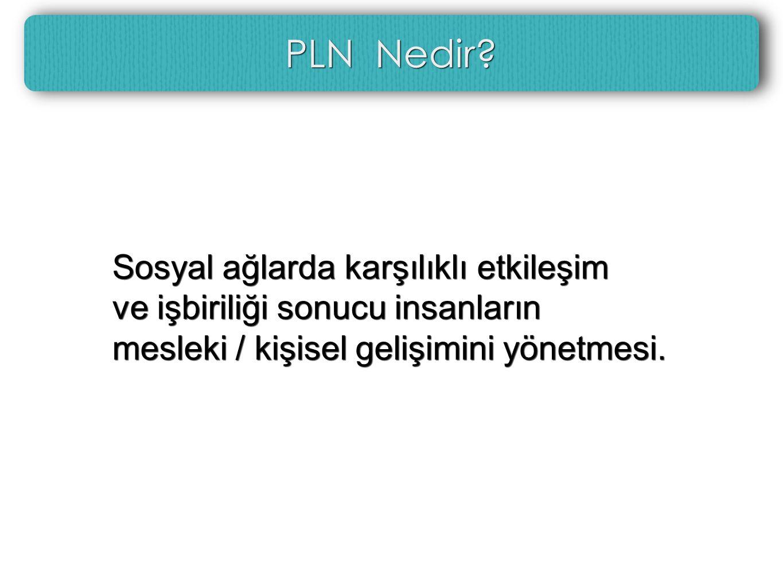 PLN Nedir.