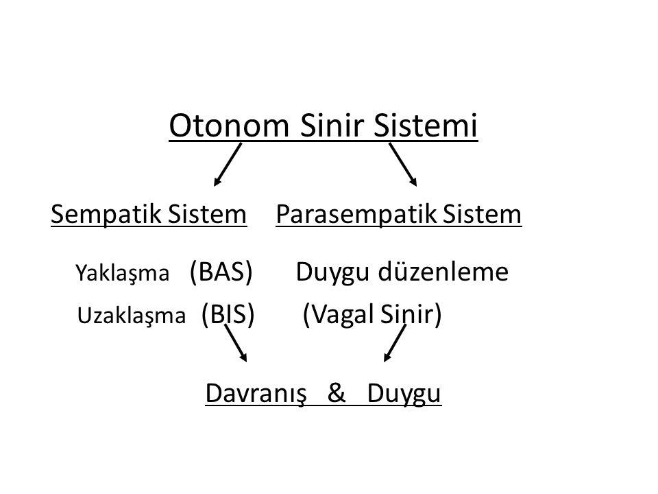 Otonom Sinir Sistemi Sempatik Sistem Parasempatik Sistem Yaklaşma (BAS) Duygu düzenleme Uzaklaşma (BIS) (Vagal Sinir) Davranış & Duygu