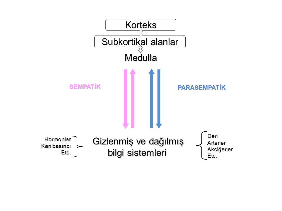 Korteks Subkortikal alanlar Medulla Gizlenmiş ve dağılmış bilgi sistemleri Hormonlar Kan basıncı Kan basıncıEtc.