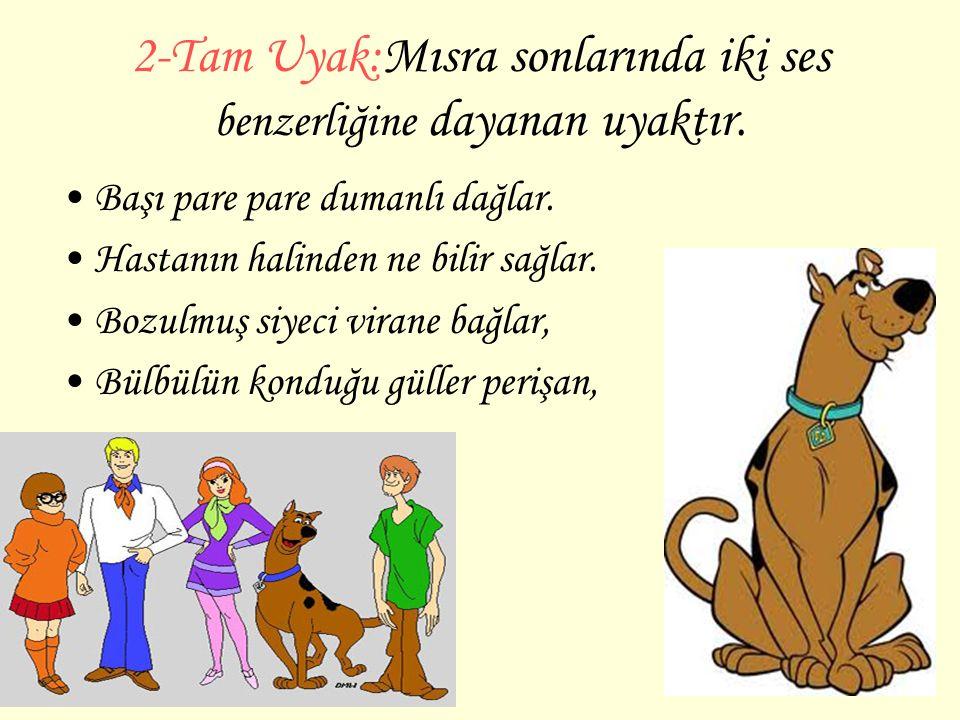 2-Tam Uyak:Mısra sonlarında iki ses benzerliğine dayanan uyaktır.