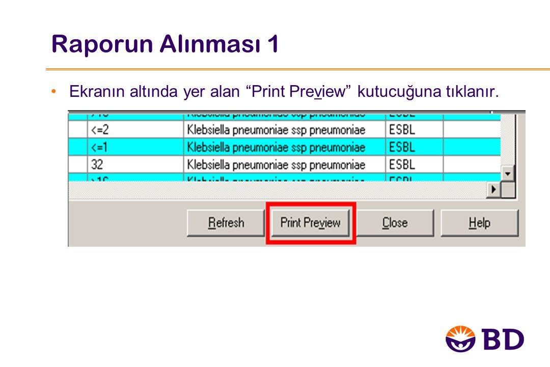 Raporun Alınması 1 Ekranın altında yer alan Print Preview kutucuğuna tıklanır.