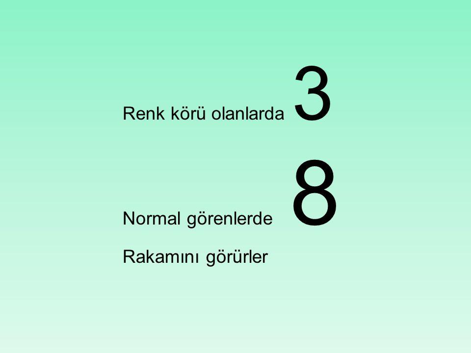 Renk körü olanlarda 3 Normal görenlerde 8 Rakamını görürler