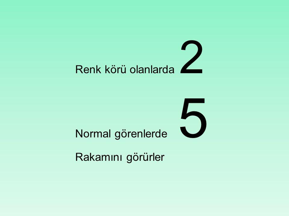 Renk körü olanlarda 2 Normal görenlerde 5 Rakamını görürler