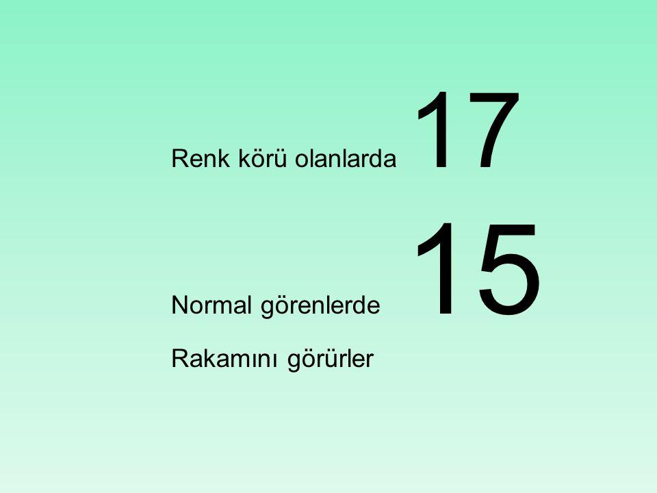 Renk körü olanlarda 17 Normal görenlerde 15 Rakamını görürler