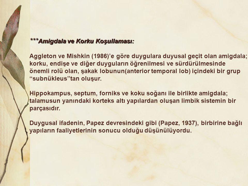 *** Amigdala ve Korku Koşullaması: Aggleton ve Mishkin (1986)'e göre duygulara duyusal geçit olan amigdala; korku, endişe ve diğer duyguların öğrenilm