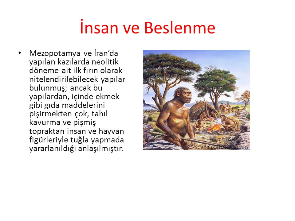 İnsan ve Beslenme Mezopotamya ve İran'da yapılan kazılarda neolitik döneme ait ilk fırın olarak nitelendirilebilecek yapılar bulunmuş; ancak bu yapıla