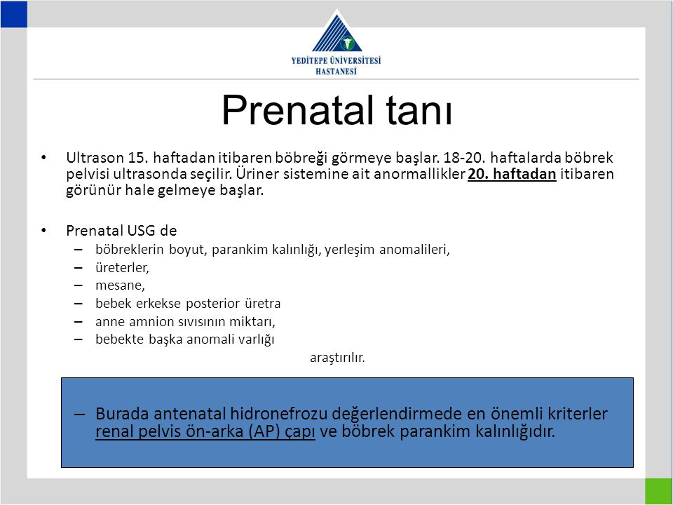 Prenatal tanı Ultrason 15.haftadan itibaren böbreği görmeye başlar.