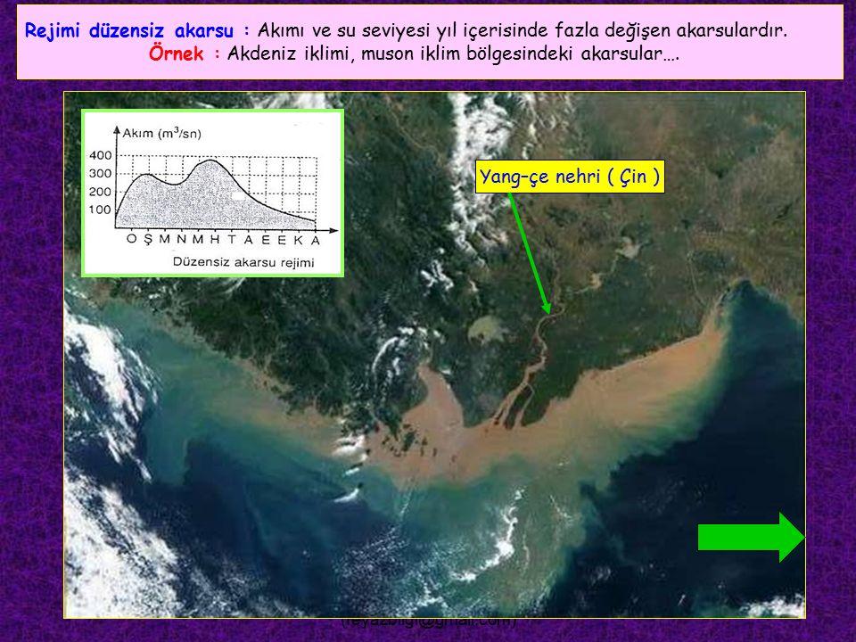 FEYAZ BİLGİ (feyazbilgi@gmail.com) Rejimi düzenli akarsu : Akımı ve su seviyesi yıl içerisinde fazla değişmeyen akarsulardır. Örnek : Ekvatoral iklim