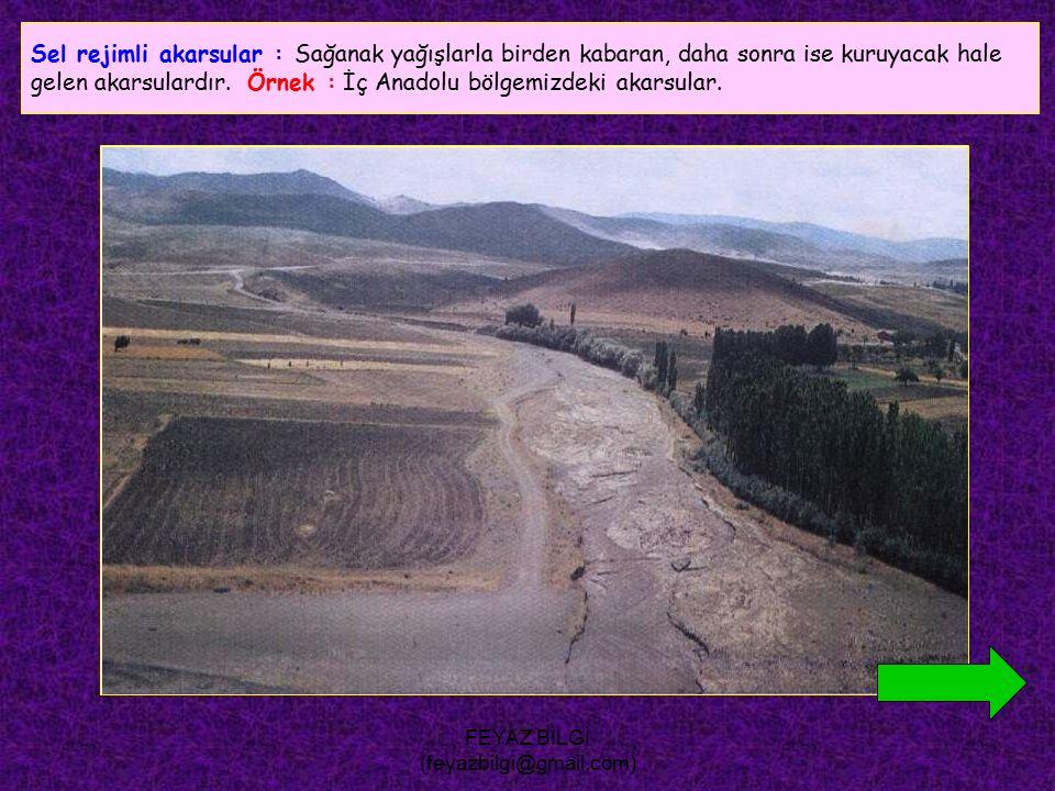 FEYAZ BİLGİ (feyazbilgi@gmail.com) Kaynak sularıyla beslenen akarsular : Akımları, yıl içerisinde çok az değişir. Akdeniz bölgesinde daha çok görülür.