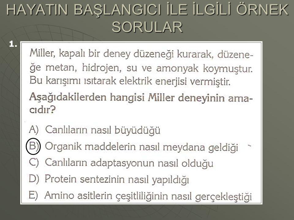 HAYATIN BAŞLANGICI İLE İLGİLİ ÖRNEK SORULAR 1.