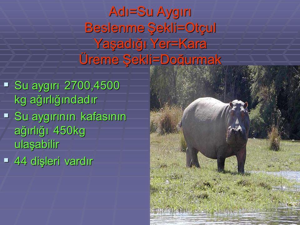 Adı=Fil Beslenme Şekli=Otçul Yaşadığı Der=Kara Üreme Şekli=Doğurmak  Ortalama yaşam süreleri 60-80 yıldır  Afrika fili yaşayan kara hayvanlarının en irisidir  Günde 225kg ot yiyebilirler
