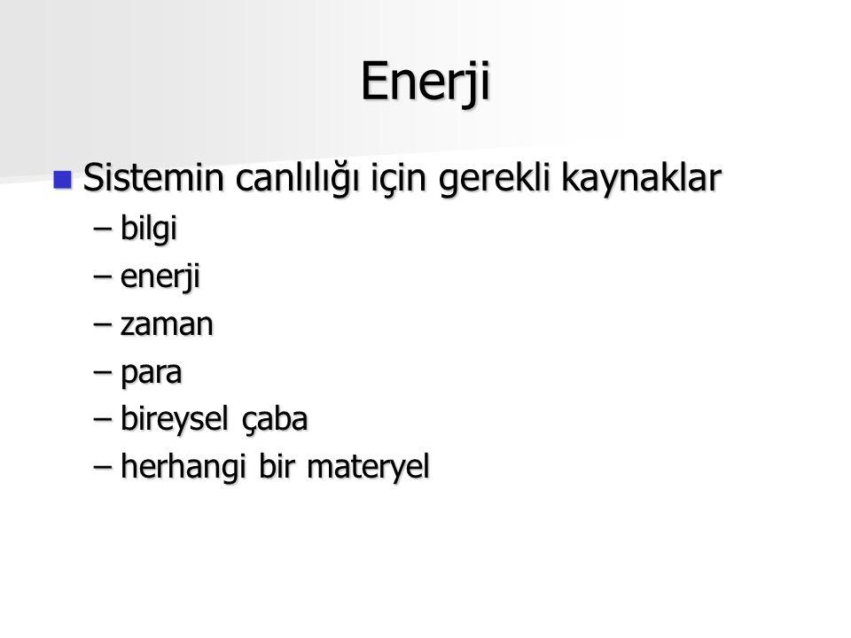 Enerji Sistemin canlılığı için gerekli kaynaklar Sistemin canlılığı için gerekli kaynaklar –bilgi –enerji –zaman –para –bireysel çaba –herhangi bir materyel